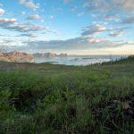 Husfjellet | Skaland | Senja | Lofoten